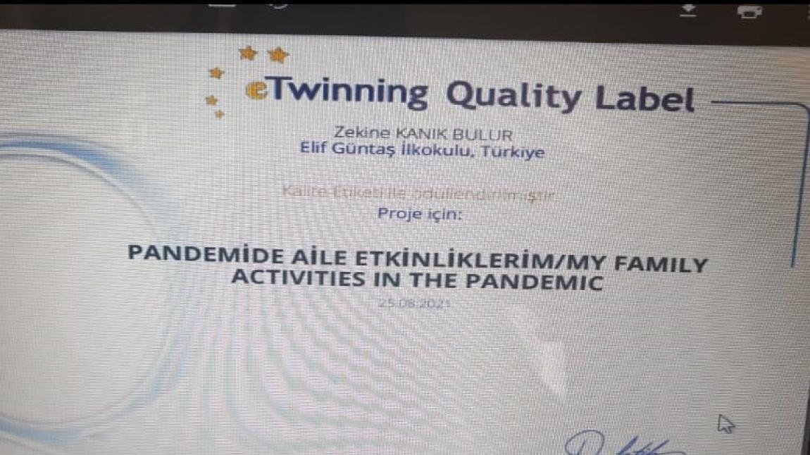 Okulumuz Öğretmenlerinden Zekine KANIK BULUR'un Ortağı Olduğu Pandemide Aile Ekinliklerim Projesi Kalite Etiketi Almaya Hak Kazandı